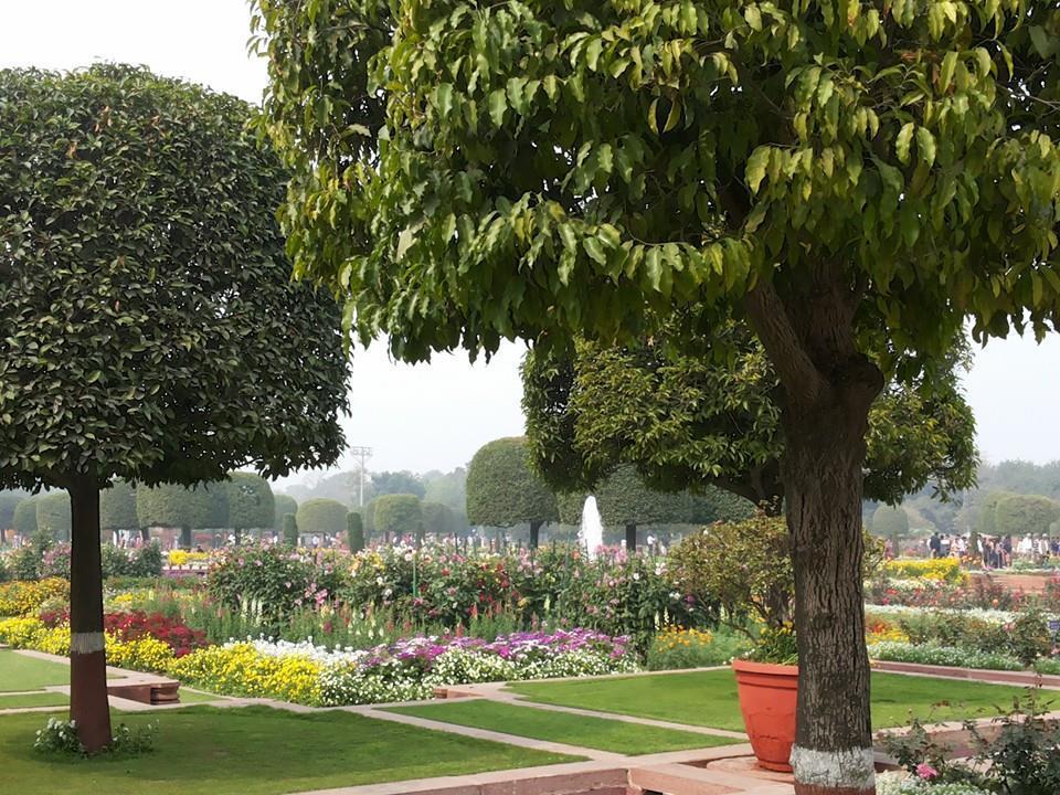 Mughal garden 2015 by neha rastogi tripoto Mughal garden booking