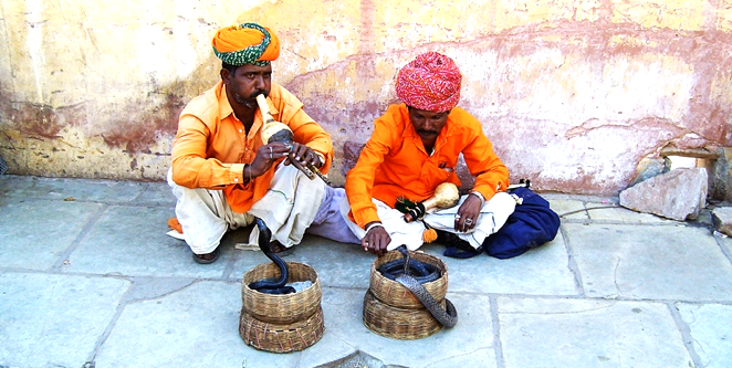 Photos of Snake Charmers Jaipur by Niko