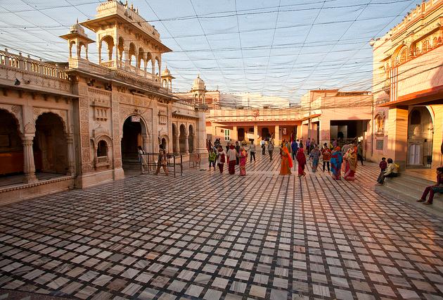 Photos of Karni Mata Rat Temple by Niko