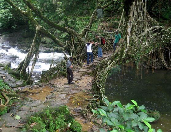 Nature's boon , Meghalaya