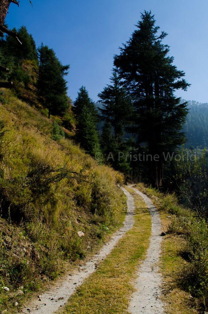 Naggar: A Quiet Getaway in the Hills