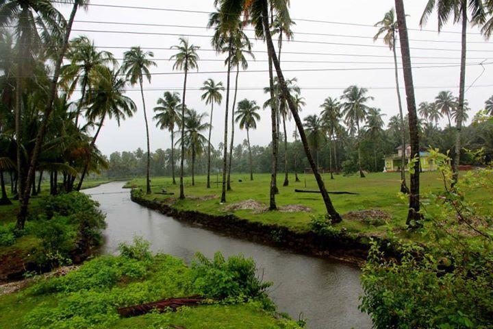 Goa in the rains - brilliantly beautiful