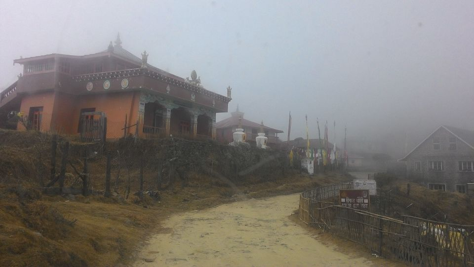 Photos of Sndakphu,,way to heaven...combination of nepal and India. 13/15 by Debasree