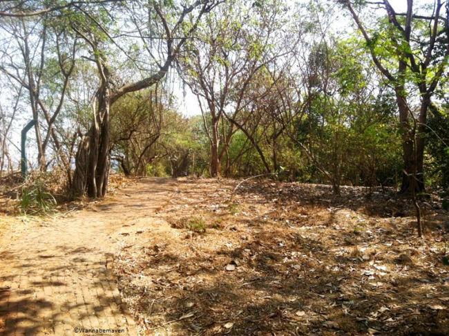Bhavan S Nature Park Mumbai