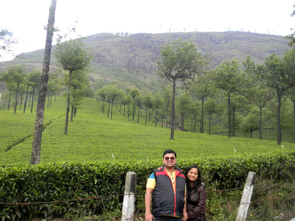 Unrivaled Munnar - Kerala Destination 1 by Monika Roy Chowdhury ...