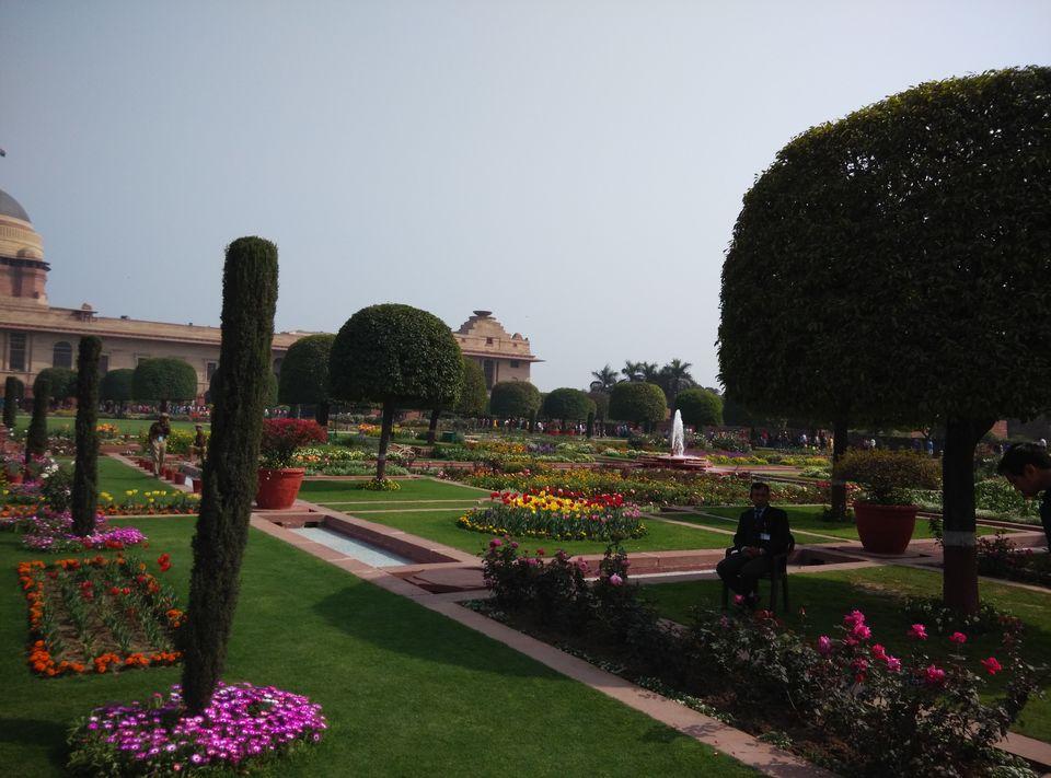 Delhi by tanvi nadkarni tripoto Mughal garden booking