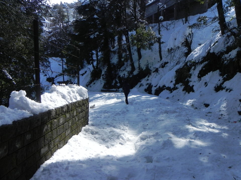 dalhousie chat Chat with local people in dalhousie and himachal pradesh right now.