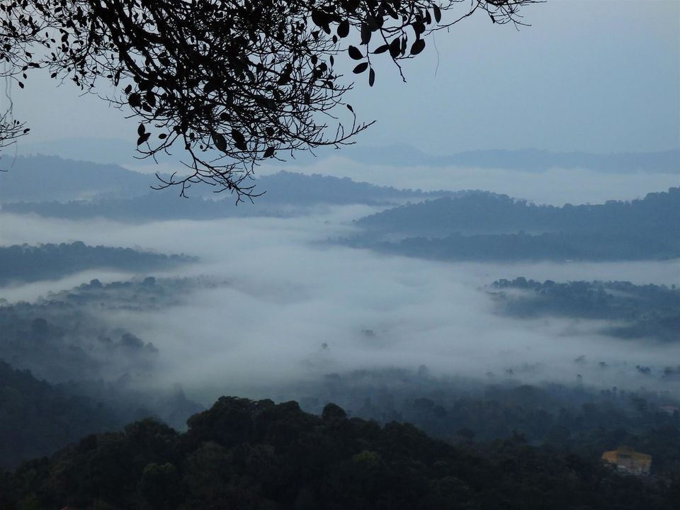 Solo trip to the Scotland of India - Coorg