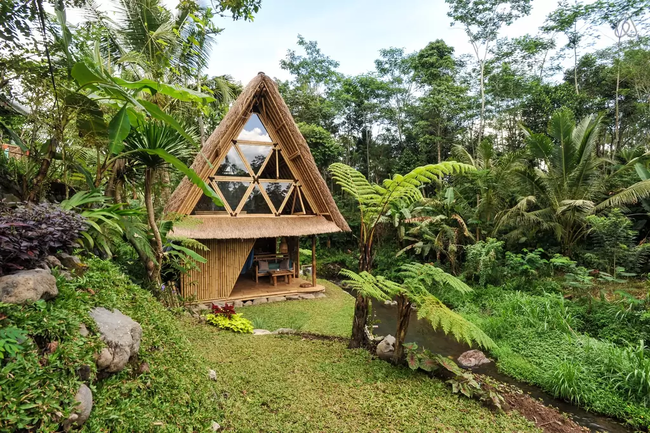 5 Fantastic Eco Homes That Will Bring You Closer to Nature. Literally!