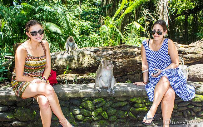 Sacred Monkey Forest Sanctuary - Ubud