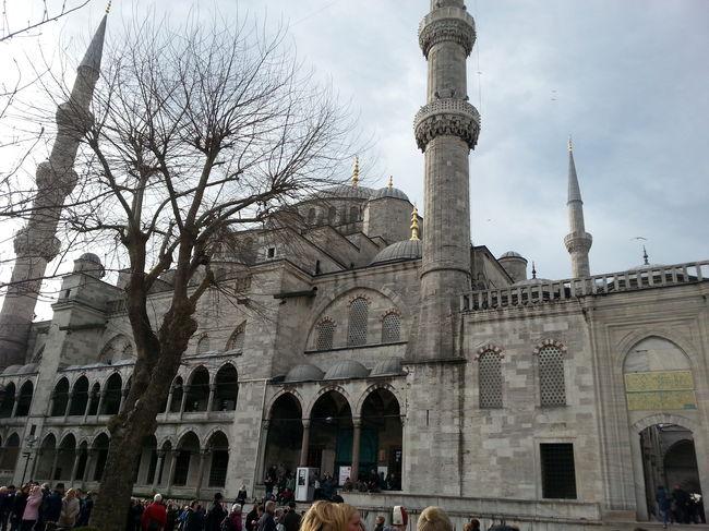 Globe Trot Turkey