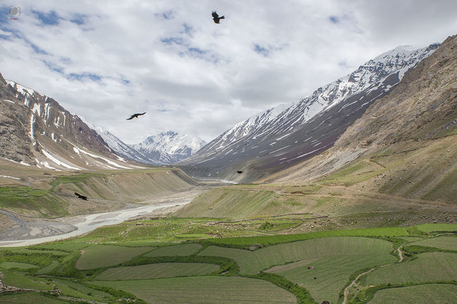 9 Destinations in India Worth Ditching Ladakh For