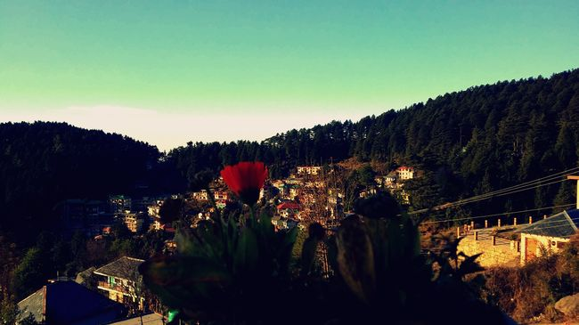 dalhousie single guys The beautiful town of dalhousie,  would have been a kind of death sentence for the many men who had little education and no other  dating back to the.