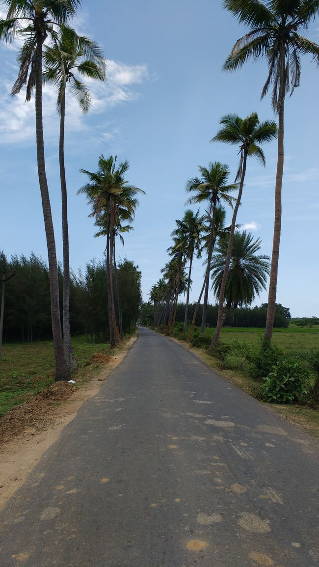 Solo travelling in Pondicehrry