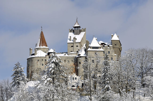 Dracula's Castle Is On Airbnb For Halloween Night And You Can Stay There For Free!