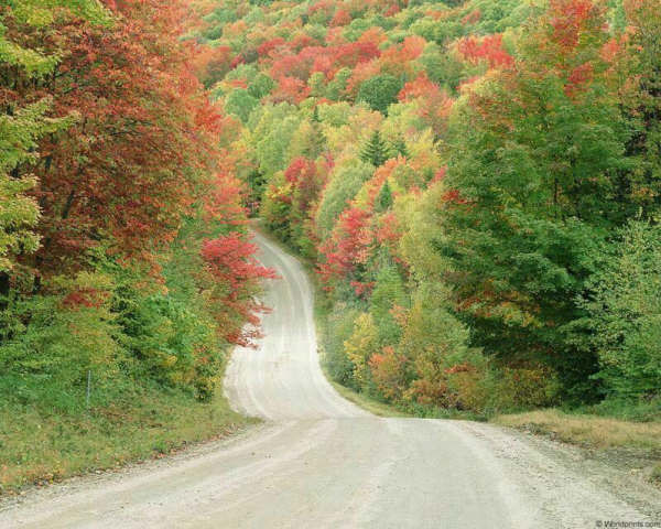 10 most beautiful Indian roads