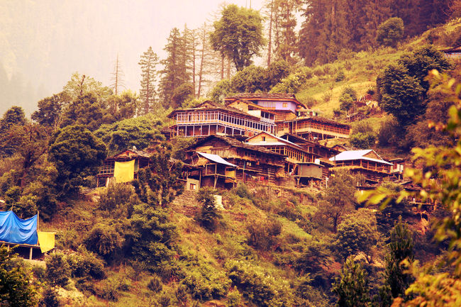 Trekking Himachal Pradesh Solo Part- 3 (Chandrakhani pass trek)