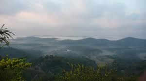 Green Land : Coorg
