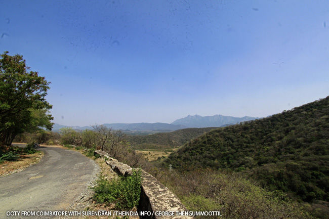 Ooty-Manjoor Bike Trip: Most beautiful road through the forest