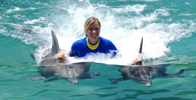10 Places In The World Where You Can Go Swimming With Dolphins