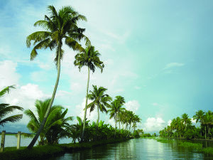 Kerala tourism's trump card - Alleppey Houseboat cruise