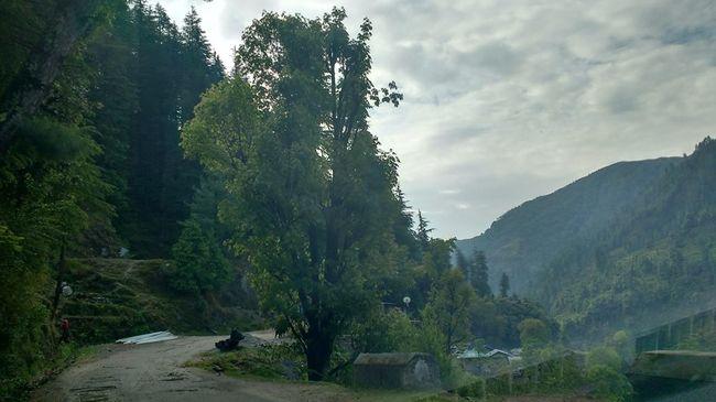 Barot-An unsung star of Himachal
