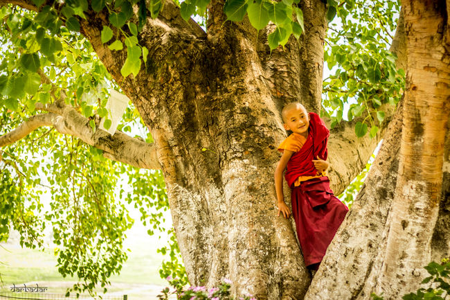 A peek into Buddhist Monasticism in Bhutan