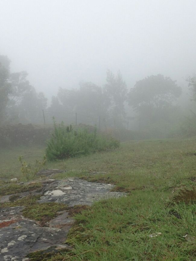 kodaikanal place to fall in love with