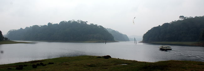 A Hurtle before the Rapture- Boat Ride @ Periyar Lake