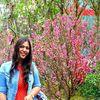 Photo of Pratibha Singh