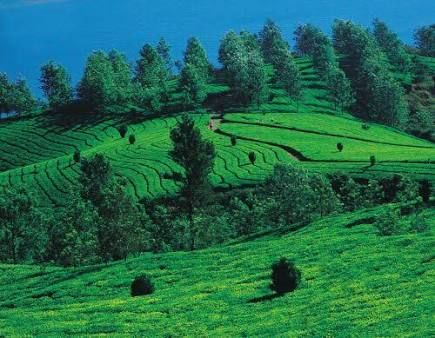 POPULAR HILL STATIONS OF KARNATAKA