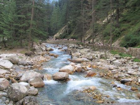 Say 'High' - Kasol