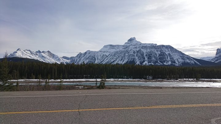 The Icefields Parkway Road Trip