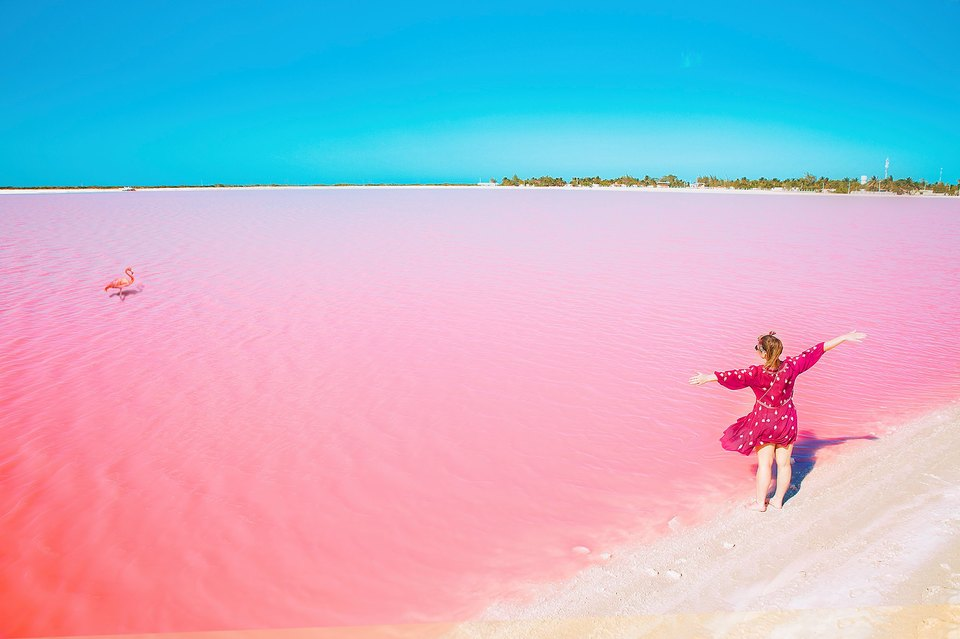 Las Colorados Pink Lake By Natasha Yeryomina Tripoto