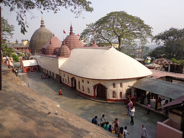 Assam One Day Tour