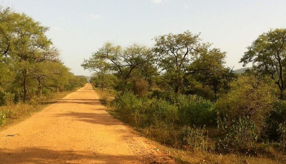 Drive Into The Sariska Jungle – Story of Pandopol temple