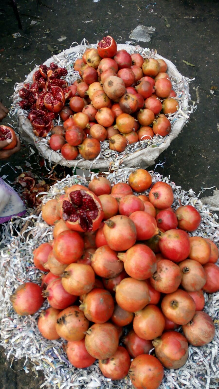 Azadpur Subzi Mandi Delhi Biggest Fruit and Vegetable Market in