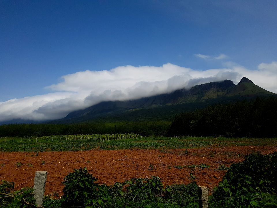 Photos of Chickmagaluru: land of coffee and nature uninterrupted 1/1 by Kaushir Raikar