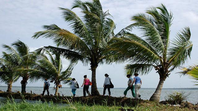 Photos of My Kerala Diaries - A Beginner's Travel Guide 1/1 by Girl Explorador