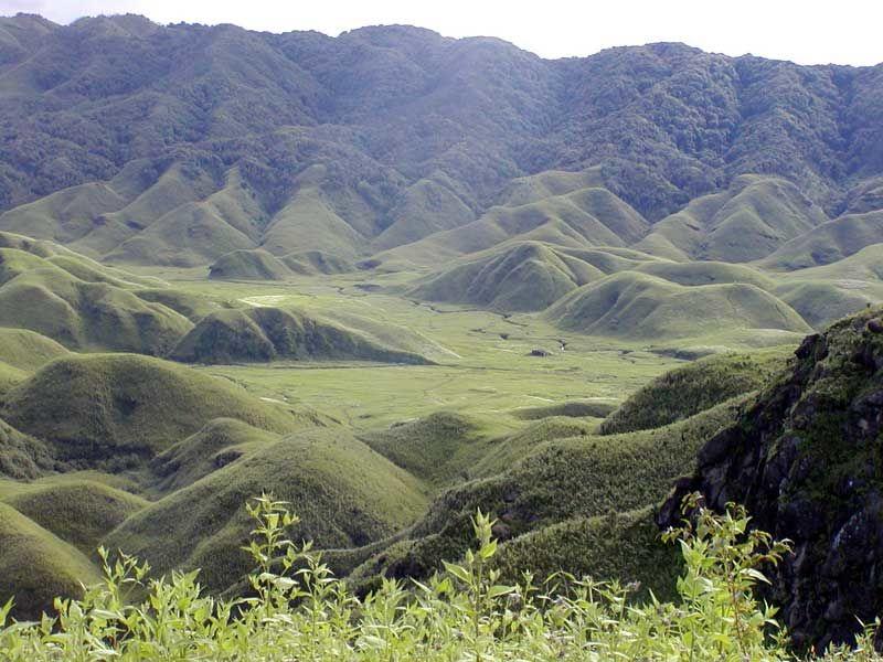 Photos of Dzükou Valley 1/7 by Rohan Pratap Dash