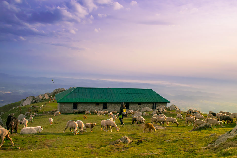 Photos of Triund 1/1 by Harshit Doshi