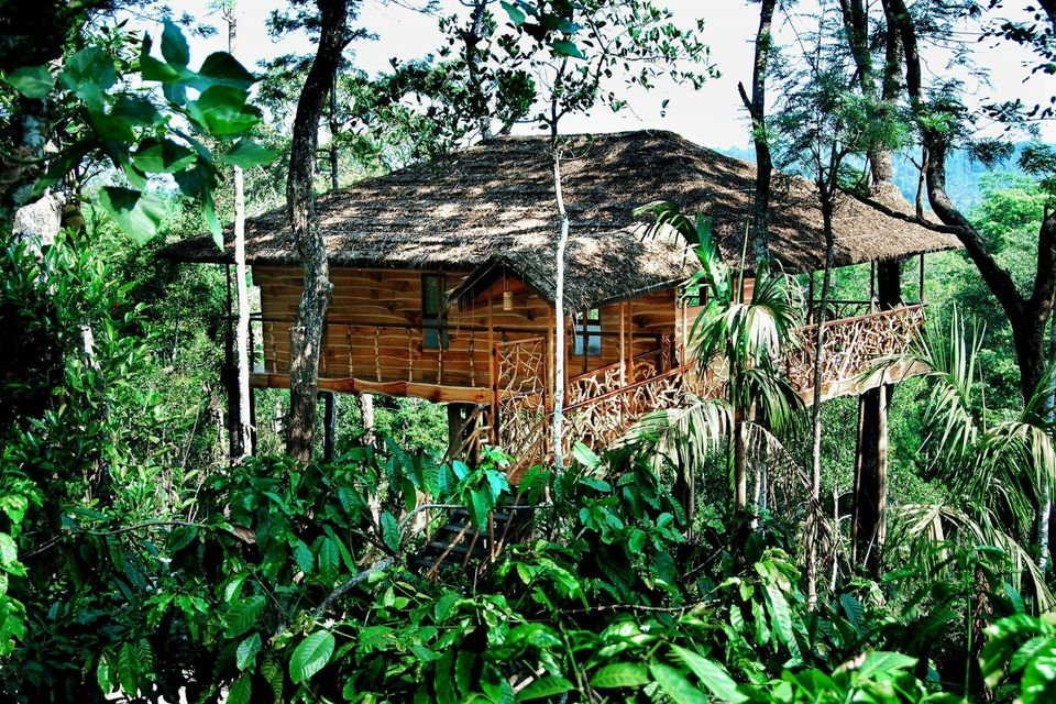 7 Best Tree Houses In India Tree House Resorts In India