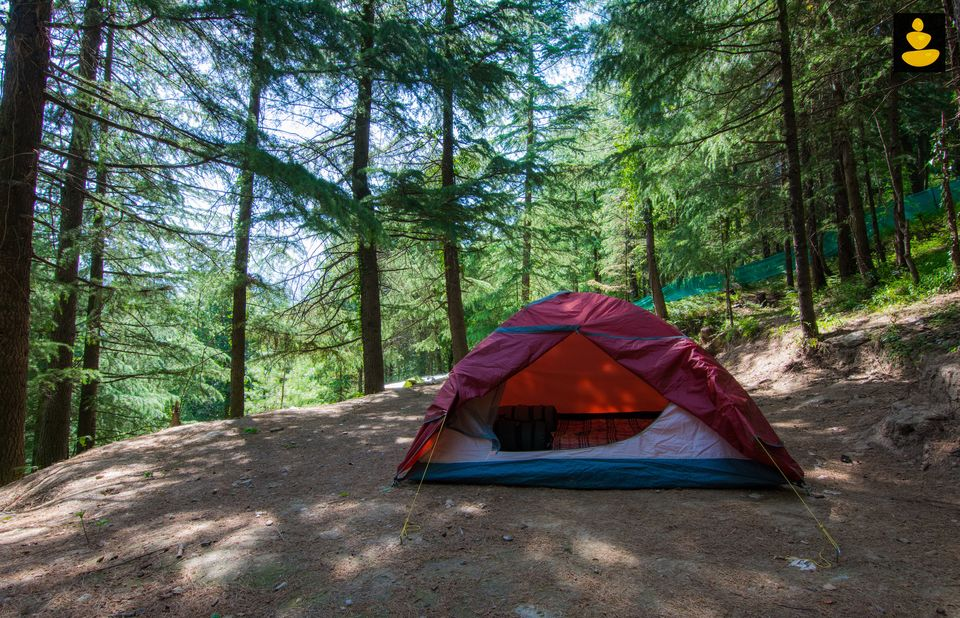 Camping and treehouse stay in India