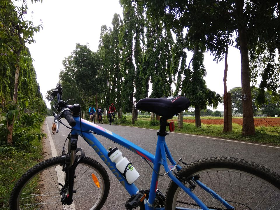 Photos of A Secret Cycling Track for Biking Enthusiasts in Namma Bengaluru: 1/1 by Anil Kumar