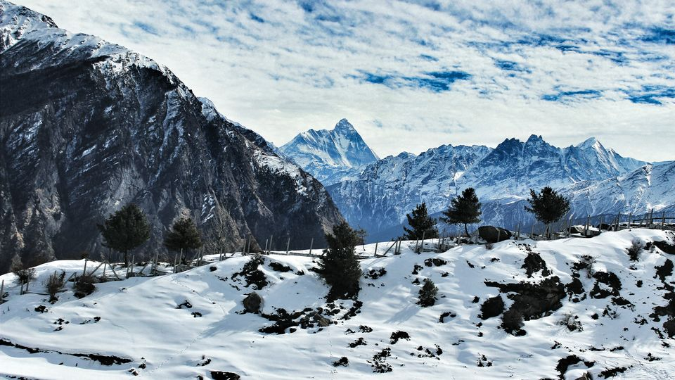 Photos of Auli, Himachal Pradesh, India 1/1 by Pritha Puri