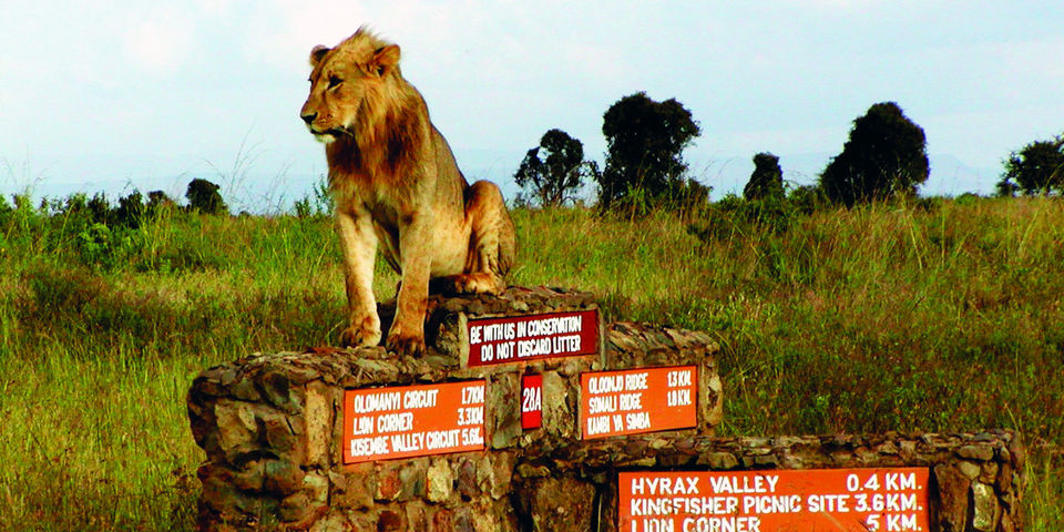 Why Magical Kenya Is A Must Visit For Every Business Traveller