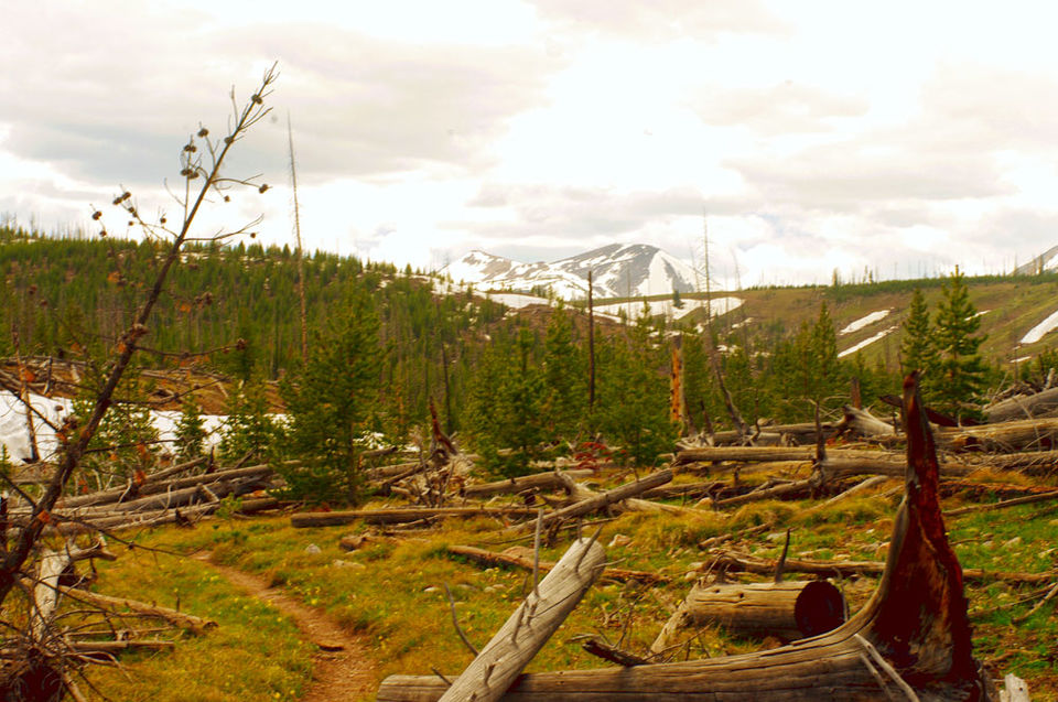 Photos of Grizzly Lake Trail 1/9 by Katya Laroche