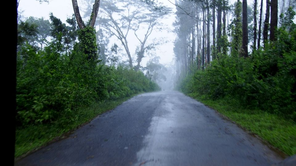 Image result for coorg road