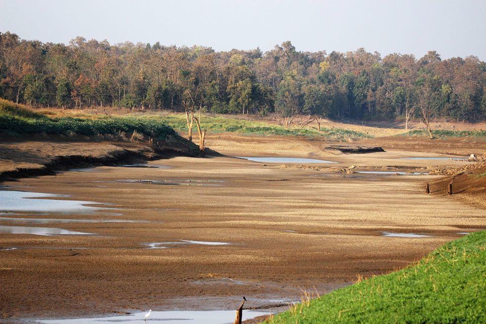 Photo of Take a Virtual tour to Mowgli's land -Pench National Park 26/30 by Sheetal Vibhuti escapingsoul.in