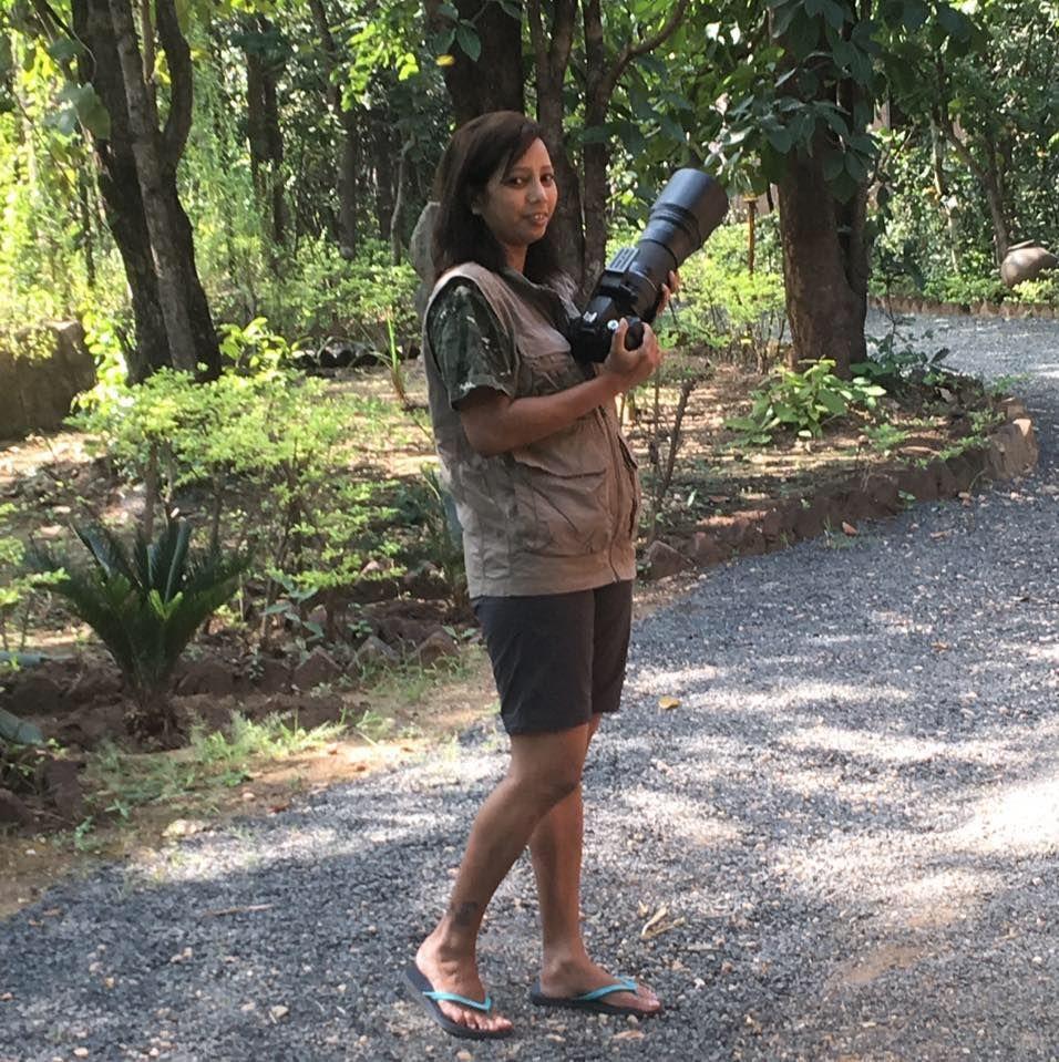 Photo of Take a Virtual tour to Mowgli's land -Pench National Park 29/30 by Sheetal Vibhuti escapingsoul.in